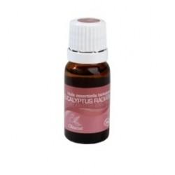 Oléanat, Esenciální olej - Eukalyptus, 10 ml