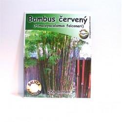 Bambus červený - semena 2ks