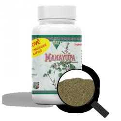 Manayupa (Desmodium adscendens Sw.) VEGA kapsle 350 mg x 100